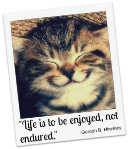 A smiling cat and quote about enjoying life from Gordon Hinckley.